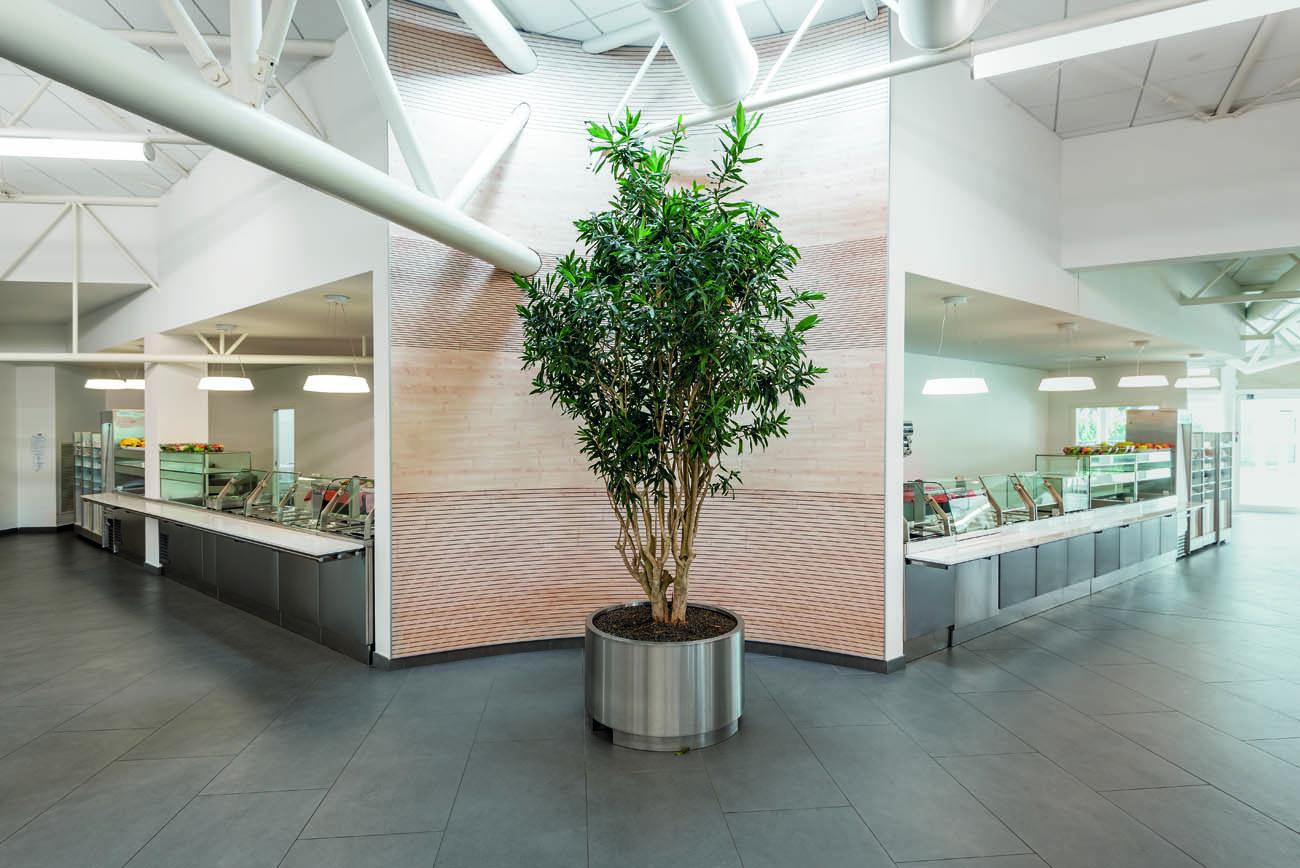 mensa cefla imola_studio tb progettazione architettonica (1)